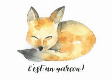 Carte - Renaud 4 - C'est un garçon